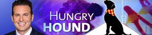 Hungry  Hound photo