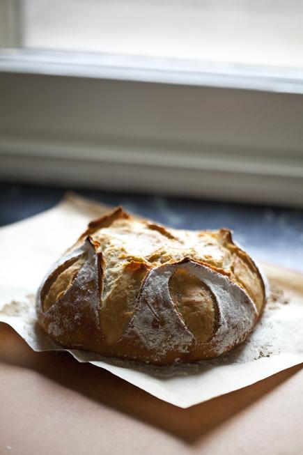 Old dough boule   Breadin5 04